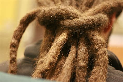 difference between locks and dreadlocks dreadlocks vs braids what s the difference how to get