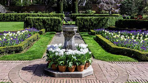 garden blumen fotos kalifornien usa filoli gardens natur tulpen garten