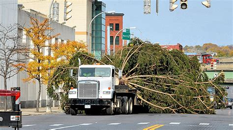 christmas tree farms erie county ny update syracuse s 2011 tree arrives in clinton square syracuse