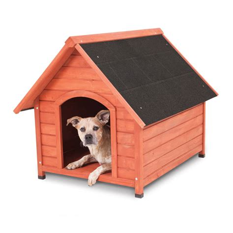 dog in new house new wood dog house for medium dogs 50 70 lbs indoor outdoor pet doghouse what s it worth
