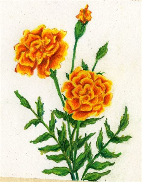 marigold paint marigold paint 94 best images about tats on pinterest