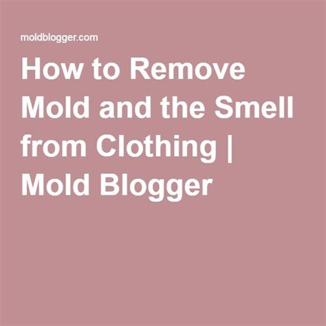How To Remove Mold From Closet 1000 ideas about remove mold on cleaning mold mildew remover and cleaning