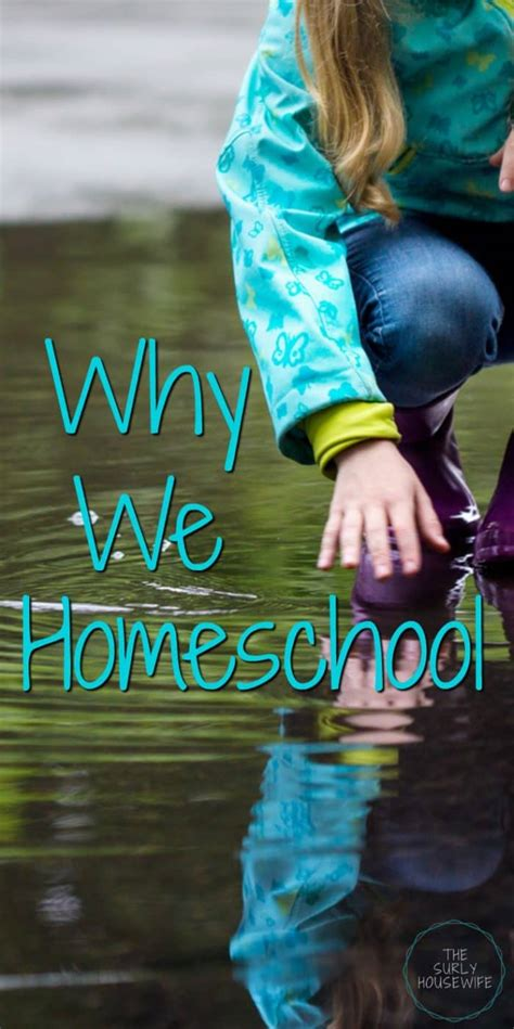 why homeschool 10 reasons why it s the best for our family
