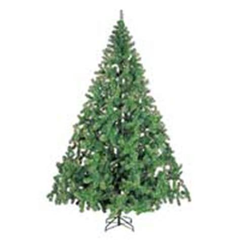 x tree gifts to bangalore send tree to bangalore