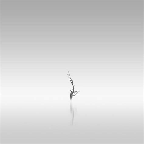 White Photographer magnificent black and white photography by kevin