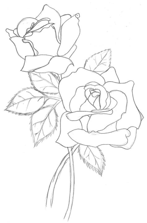 flower basket drawing with colour best 25 flower outline