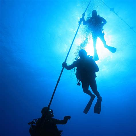 dive packages cancun diving package
