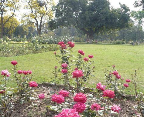 rose garden chandigarh timings history tourist