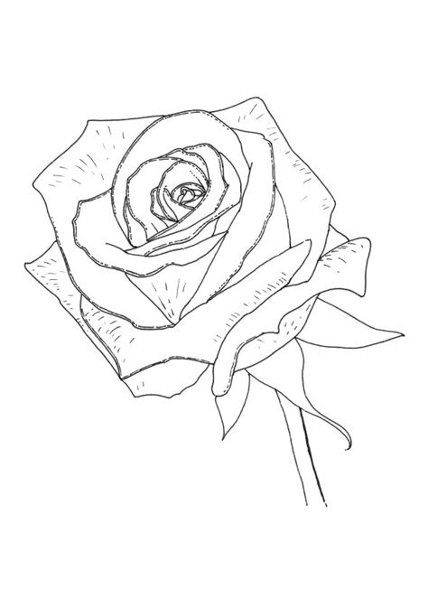 coloring pages of roses and crosses free coloring pages of cross and rose