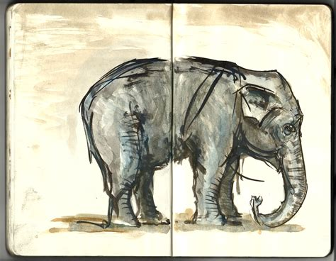 sketchbook every artist was an size color your own cover books elephant sketch the zoo moleskine the hiking artist