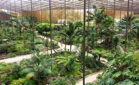 estufa jardin estufa fria un jardin tropical au centre de lisbonne
