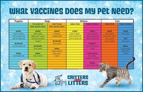 vaccines for dogs vaccine chart for dogs and cats this pet vaccination chart has space to record all