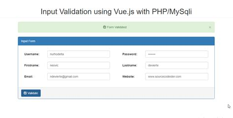 input validation pattern javascript input validation using vue js with php free source code