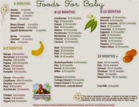 film untuk bayi 5 bulan zahidahadi persediaan makanan pertama untuk bayi 6 bulan