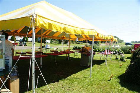 Backyard Anniversary by 50th Wedding Anniversary Ideas Real Inspiration