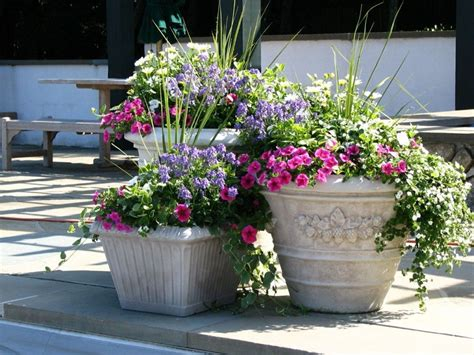 Patio Decorating Ideas With Flowers Flowers For Garden Pots