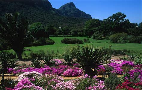 jardin botanique national de kirstenbosch en afrique du sud