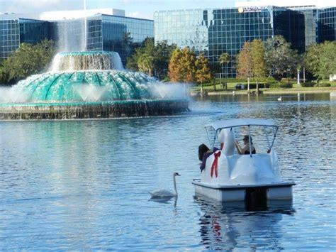 swan boats orlando fl orlando lake eola swan boats orlando area attractions