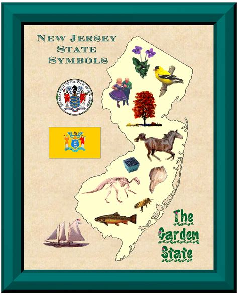 new jersey state colors new jersey state symbols colors are buff and blue also