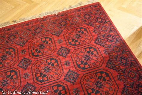 green rug cleaning nyc green carpet cleaning how to do it yourself no ordinary homestead