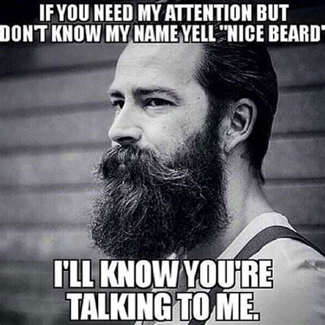 Meme Beard Guy - top 60 best funny beard memes bearded humor and quotes