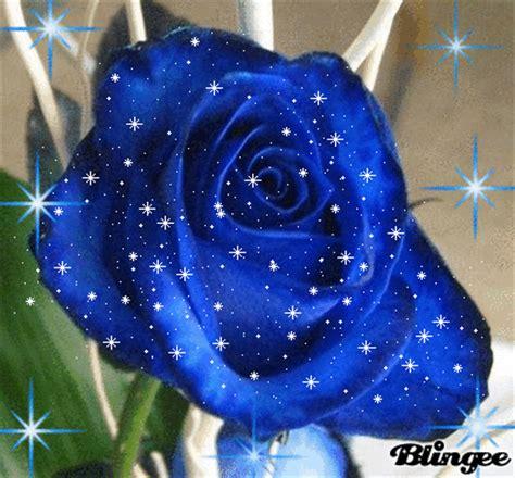 imagenes de flores azules brillantes hermosas rosas azules con lindos movimientos