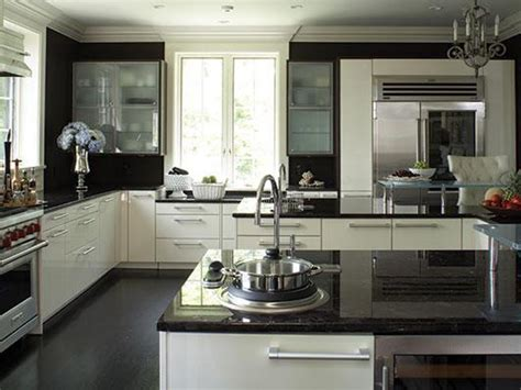 black granite countertops  daring touch