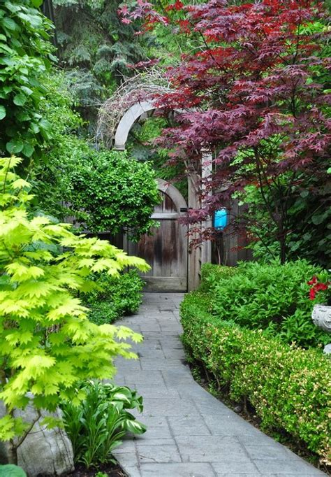 garden between houses gardening ideas for the narrow garden between suburban homes hometalk
