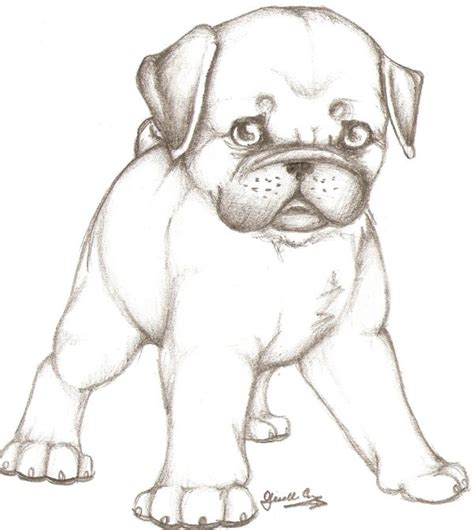 drawings of pugs puppy pug by gothicnightmares on deviantart