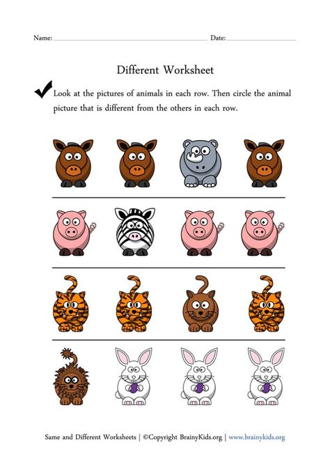School Lego Alike same and different worksheets finding different animal