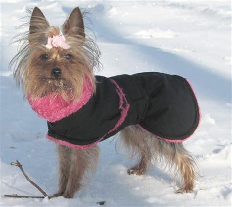 yorkie coat photos whippet coats greyhound coats more blue willow coats