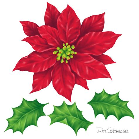 poinsettia designs poinsettia and leaves design components by