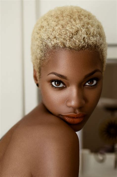 black woman shorthair with 27pice 233 best images about short natural hairstyles on