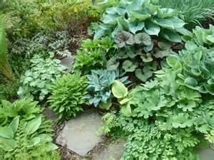 Hosta Garden Layout Gardens Antidotes To The News Brincken Landscape Garden Design