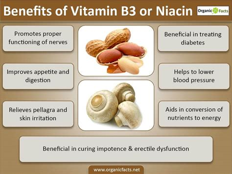 Vitamin B3 Weight Loss