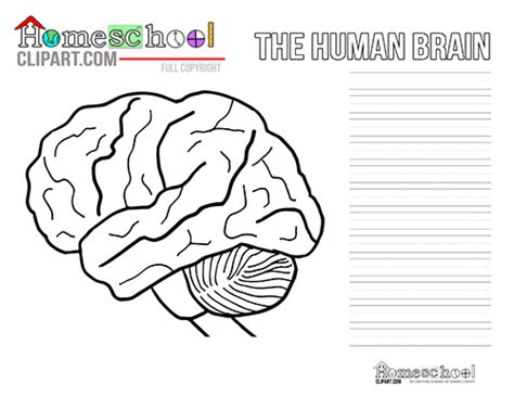 brain coloring page pdf brain crafts activities