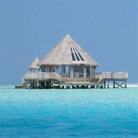 Tiki Hut Island tiki hut island troy has always wanted a tiki hut bar house ideas
