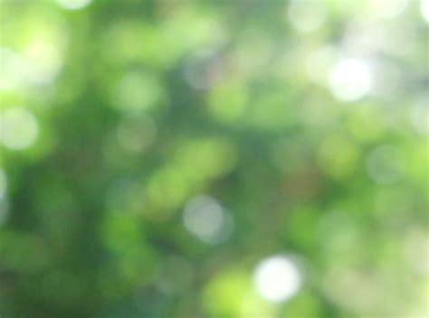 bokeh green wallpaper bokeh texture green 3 by francescadelfino on deviantart