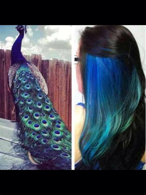 hue ology your weekly color inspiration peacock blue 132 best terrific tresses images on pinterest
