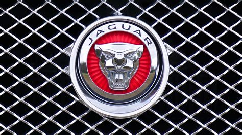 jaguar car icon jaguar logo emblem 183 free photo on pixabay