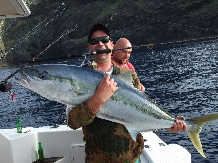 Cubung Platina the softbait of fame the fishing website
