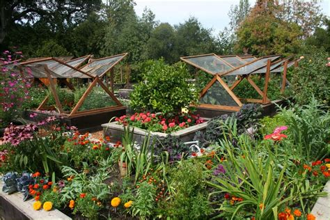 Vegetable Garden Wallpaper Wallpaper Gallery Cool Vegetable Gardens