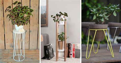 modern plant stands put  favorite plants