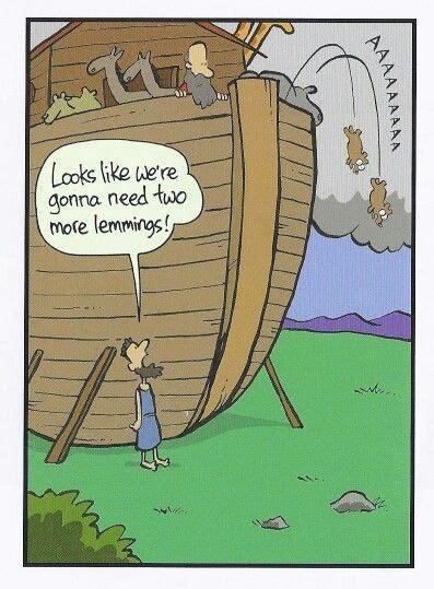 bible humor images  pinterest   ideas