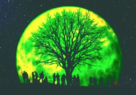 Pictures Of A Green Moon