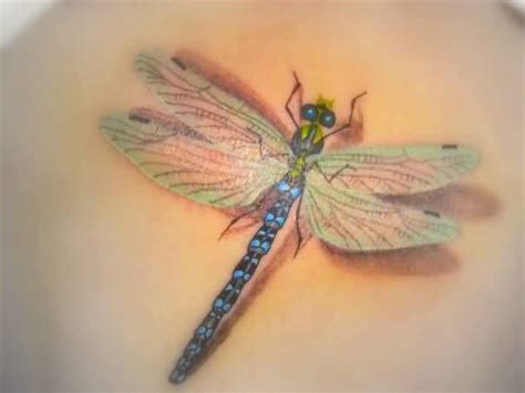 3d dragonfly tattoo ideas and 3d dragonfly tattoo designs