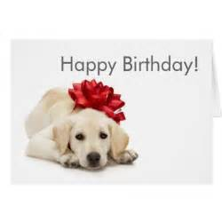 labrador retriever happy birthday card zazzle