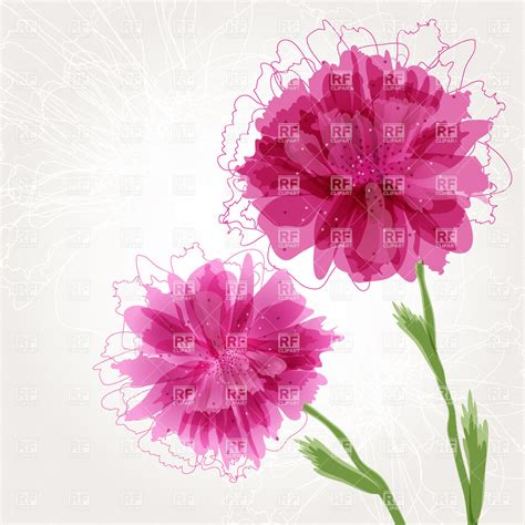 peony clipart peony flower borders clipart clipart suggest