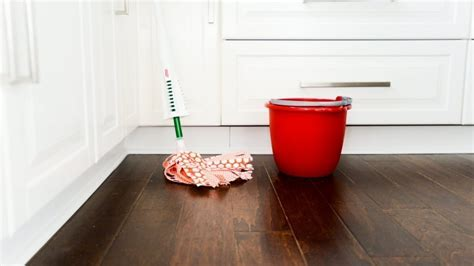 General House Cleaning vs. Deep Cleaning   Angie's List
