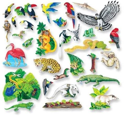rainforest animal templates 7 best images of printable rainforest animals rainforest